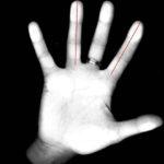 طول انگشتان