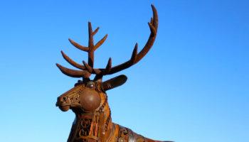 red-deer-1-582adb9bec653__880