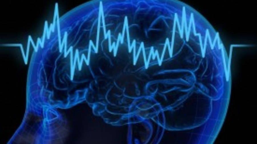 پژوهشگران دریافتند مغز انسان میتواند خاطرات از دست رفته را بازیابی کند