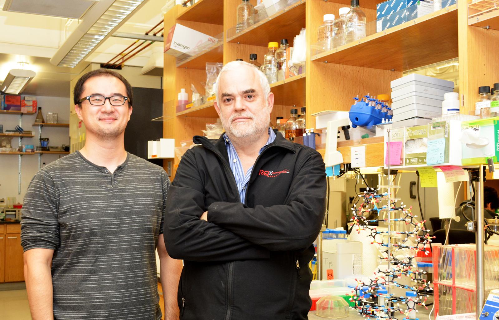 ساخت ارگانیسم نیمه مصنوعی که میتواند زندگی کند!