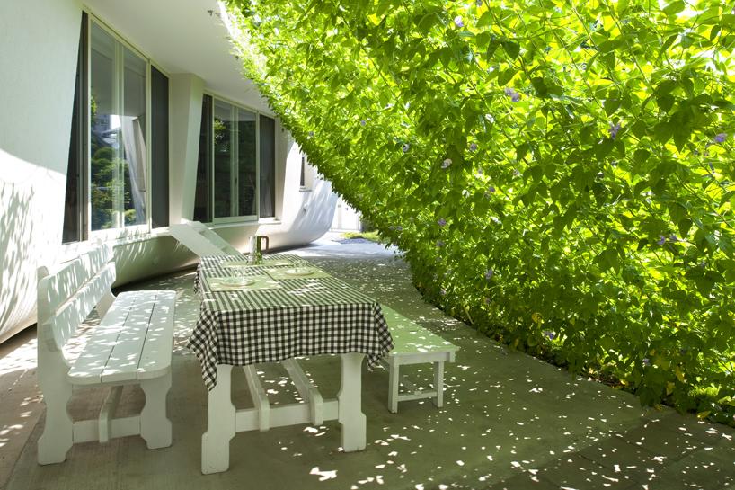پردهی سبز گیاهی