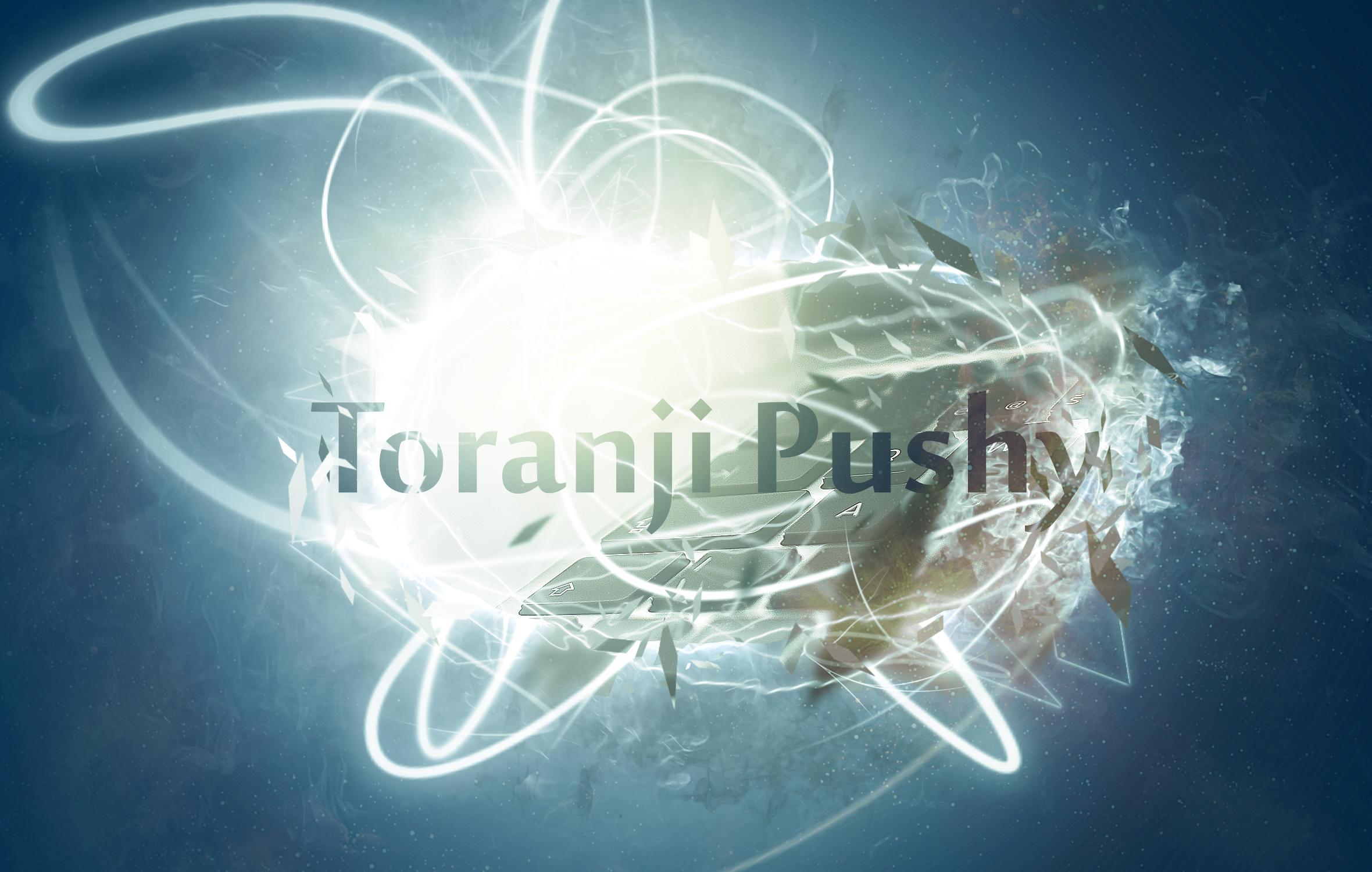 معرفی می کنیم ؛ Toranji Pushy