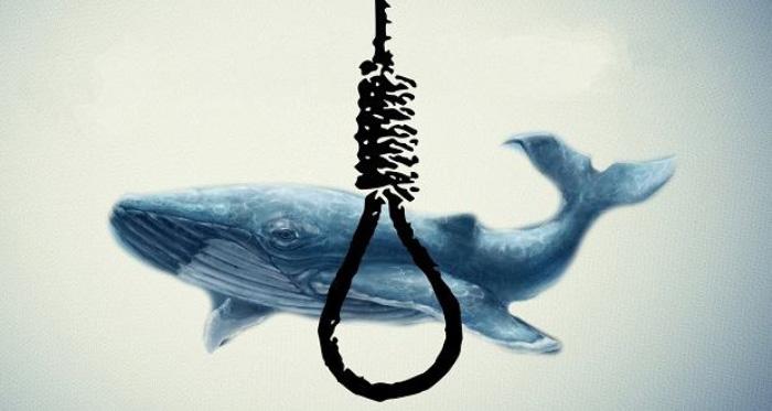 خودکشی دو جوان اصفهانی به بازی نهنگ آبی ارتباطی نداشته است