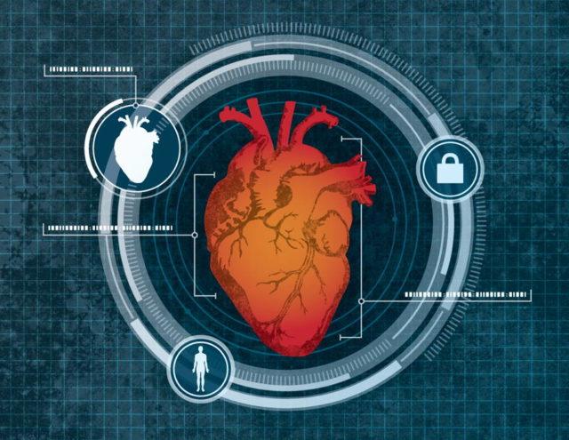 محققان میخواهند از ابعاد قلب به عنوان یک ویژگی امنیتی بیومتریک استفاده کنند