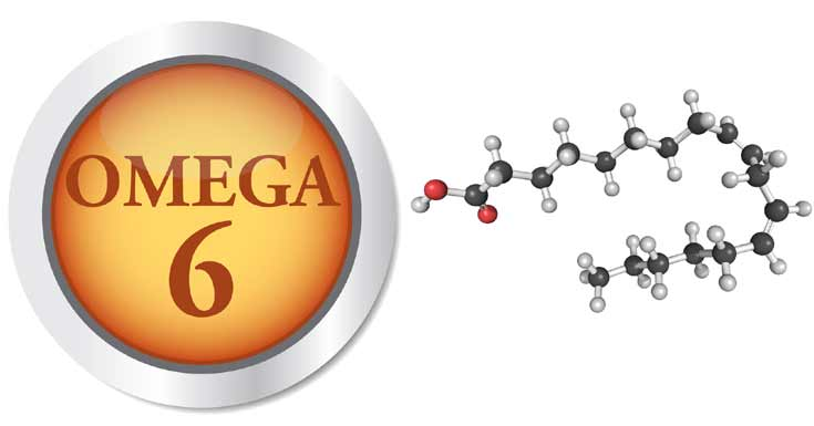 امگا 6 (OMEGA 6) خطر دیابت نوع 2 را تا 35 درصد کاهش میدهد