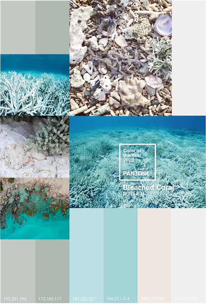 رنگ سفید مرجانی