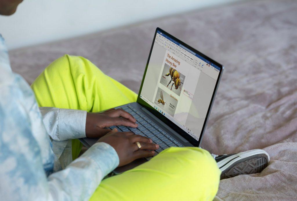 مایکروسافت Surface Laptop Go