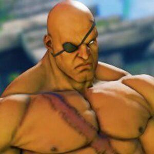 Sagat در مجموعه بازی های Street Fighter