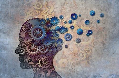 معکوس کردن پیری مغز