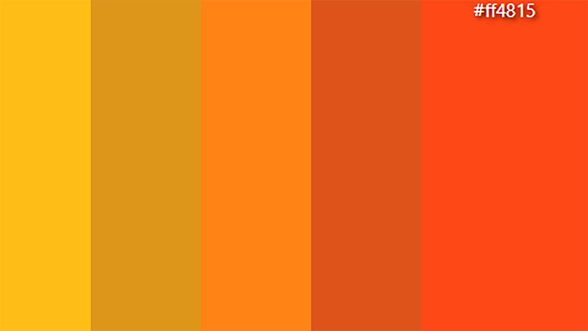 رنگ سلیقه موسیقیایی من
